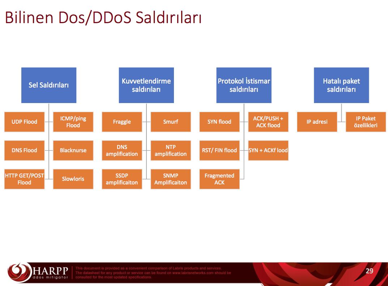 DDoS Saldırı Türleri